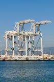 Краны в порте Окленд стоковое изображение rf