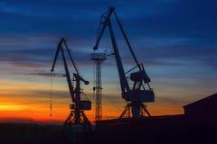 Краны гавани и предпосылка неба во время захода солнца стоковое фото rf