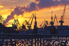 Краны гавани Стоковая Фотография RF