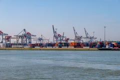 Краны и серии контейнеров в контейнерном терминале, Rotterd стоковое фото rf