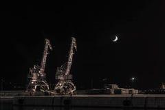 Краны и луна Стоковые Фото