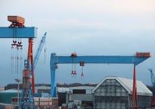 Краны контейнера на гавани с голубым небом Стоковая Фотография RF