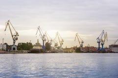 Краны морского порта Стоковые Изображения RF