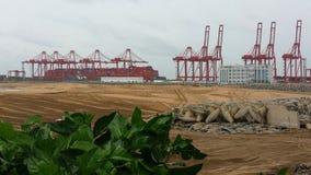 Краны на пляже стоковые фотографии rf