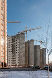 Краны строительной площадки Стоковые Фото