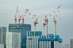 Краны Токио в цвете стоковые фотографии rf