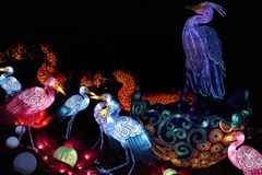 Краны фонарика, фестиваль фонарика Огайо китайский, Колумбус, Огайо Стоковые Фото