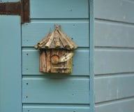 Крапивниковые в коробке гнезда Стоковое Фото