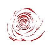 Красивая абстрактная красная роза эскиза изолированная на белой предпосылке Стоковое фото RF