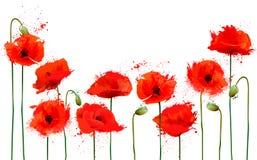 Красивая абстрактная предпосылка с красными цветками маков Стоковое Изображение RF