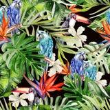 Красивая акварель безшовная, тропическая предпосылка цветочного узора джунглей с ладонью выходит, гибискус цветка, Стоковая Фотография RF