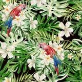 Красивая акварель безшовная, тропическая предпосылка цветочного узора джунглей с ладонью выходит, гибискус цветка, попугай Стоковая Фотография RF