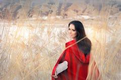 Красивая дама в красной накидке в оформлении зимы Стоковое Изображение