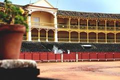 Красивая арена быка стоковые фотографии rf