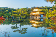 Красивая архитектура на виске Kinkakuji (золотой павильон) Стоковые Изображения