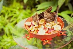 Красивая бабочка сыча есть плодоовощи стоковые изображения