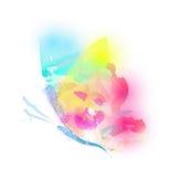 Красивая бабочка цвета, на белизне иллюстрация вектора