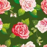 Красивая безшовная картина на флористической предпосылке Стильная текстура иллюстрации вектора с розами Иллюстрация штока
