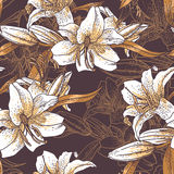 Красивая безшовная картина с лилиями Стоковые Изображения