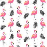 Красивая безшовная картина с розовым фламинго Стоковое фото RF