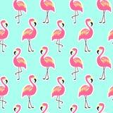 Красивая безшовная картина с розовым фламинго Стоковая Фотография RF