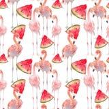 Красивая безшовная предпосылка картины лета с тропическим фламинго, кусками арбуза Улучшите для обоев, интернет-страницы стоковые изображения rf