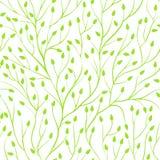 Красивая безшовная предпосылка с ветвями дерева Совершенные поздравительные открытки предпосылки и приглашения к свадьбе, день ро Стоковая Фотография