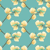 Красивая безшовная предпосылка с зацветая ветвями дерева магнолии Стоковые Фото
