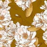Красивая безшовная флористическая картина Стоковая Фотография