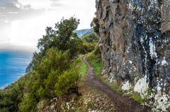 Красивая береговая линия Мадейры скалистая Стоковое Изображение RF