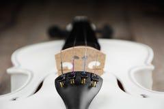 Красивая белая скрипка Стоковые Изображения