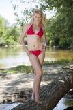 Красивая белокурая женщина в красном бикини Стоковые Изображения RF