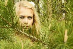 Красивая белокурая женщина за сосенкой Стоковые Фото