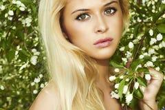 Красивая белокурая женщина с яблоней. лето Стоковое фото RF