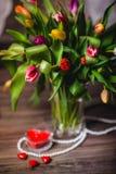 Красивая валентинка тюльпанов весны Стоковые Изображения