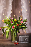 Красивая валентинка тюльпанов весны Стоковая Фотография