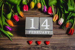 Красивая валентинка тюльпанов весны Стоковое Изображение RF
