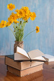 Красивая весна цветет в вазе с книгами Стоковое фото RF