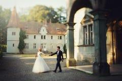 Красивая волшебная молодая невеста держа groom рук красивый вниз Стоковая Фотография