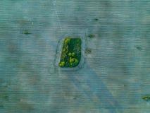 Красивая геометрия полей зеленых и коричневого фото от высоты стоковые фото