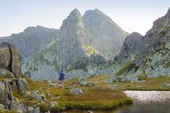 Красивая гора, Retezat Стоковое Изображение