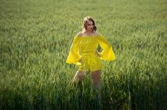 Красивая дама в пшеничном поле стоковое фото rf