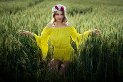 Красивая дама в пшеничном поле стоковые изображения