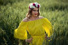 Красивая дама в пшеничном поле стоковые фото