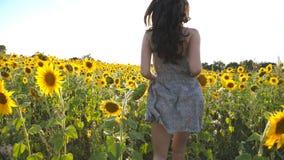 Красивая девушка бежать к солнцу на желтом поле солнцецвета Счастливая женщина jogging через луг на заходе солнца Свобода сток-видео