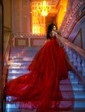 Красивая девушка брюнет в дворце стоковая фотография rf