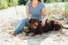 Красивая девушка играет с коричневыми labradors Стоковые Изображения RF