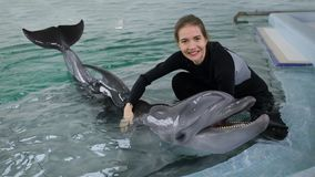 Красивая девушка играя в бассейне с дельфином стоковые изображения