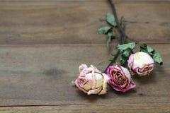 Красивая деревянная предпосылка с высушенными розовыми розами стоковые изображения rf