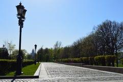 Красивая дорога в парке камней и с уличными фонарями стоковые фото